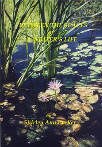 Front cover of Between the Spaces of a Writer's Life